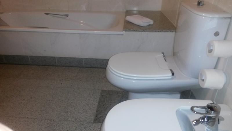 Toilet zonder steunbeugels, tussen ligbad en bidet.