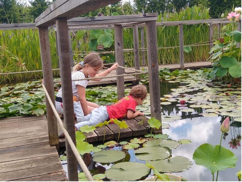 De kinderen zitten op een houten steigertje aan de rand van een vijver in Carsac.