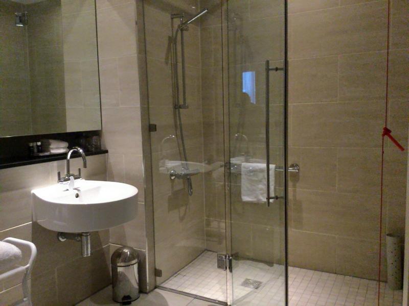 Drempelloze douche met glazen wand en deur.