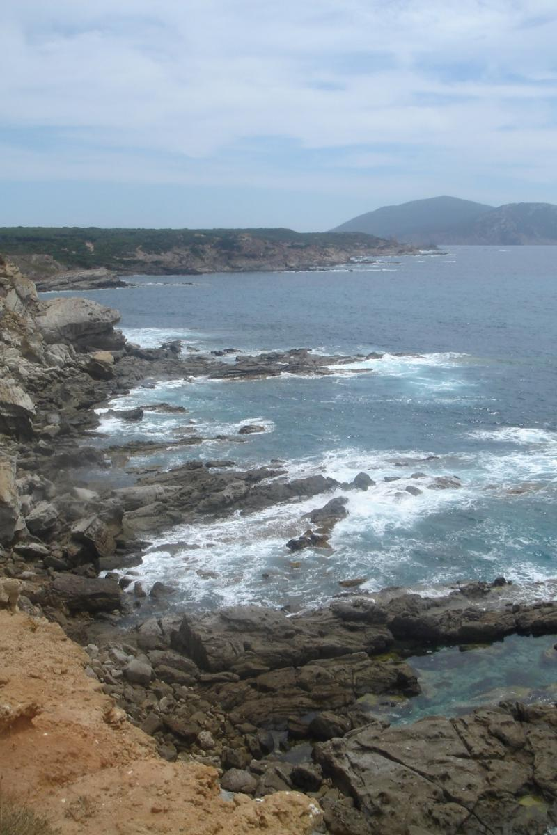 Schuimende golven beuken tegen de rotsen langs de kustlijn.
