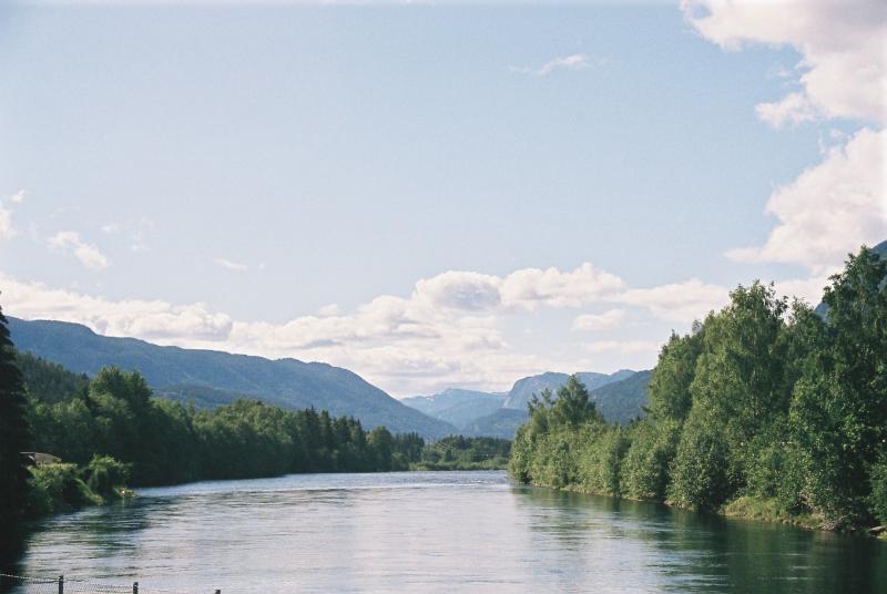 Een typisch Noors landschap: de baai tussen de bomen en de fjorden aan de horizon.