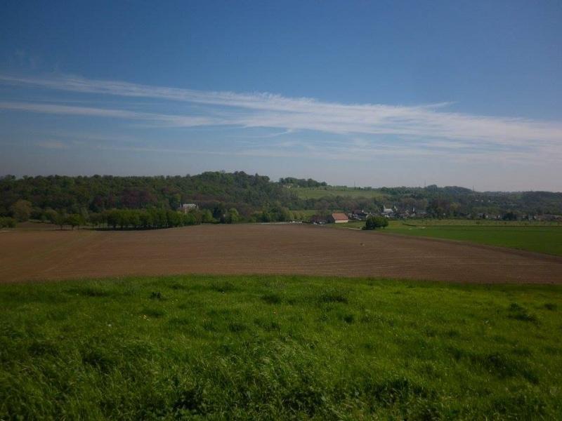 Zicht vanaf de hogere rand van het bos over een groen landschap met hoeve en 2 kastelen.