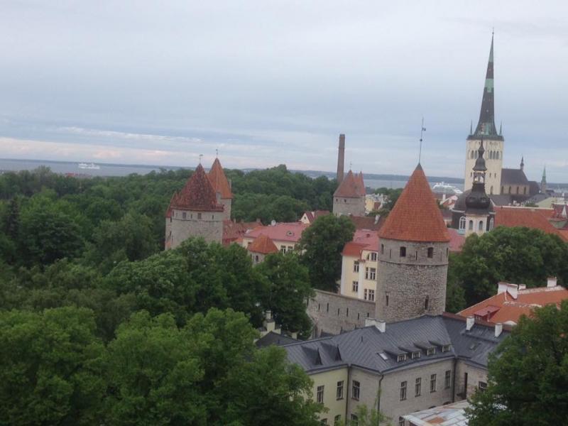 Zicht over Tallinn met verschillende torens.