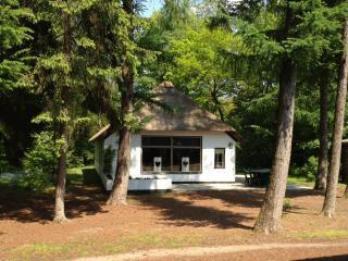 Een vakantiehuisje van Het Lorkenbos, verscholen tussen de bomen