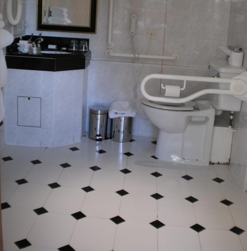 Het verlengd toilet heeft twee beugels. Links ervan is er veel opstelruimte, maar een wasmeubel neemt ervoor veel plaats in.